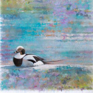 Fågelmålning alfågel, vykort