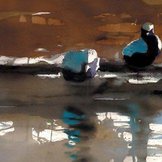 Fågelmålning kustpipare, vykort