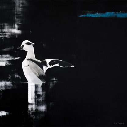 Fågelmålning salskrake, vykort