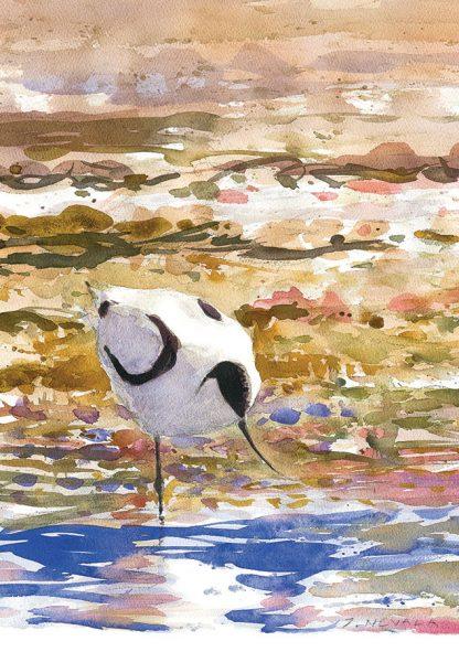 Fågelmålning skärfläcka, vykort
